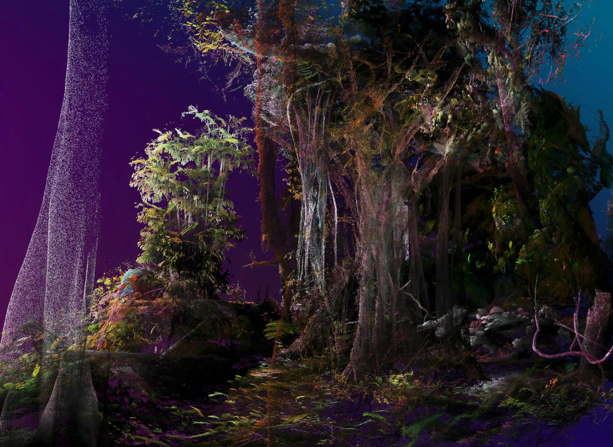 Vedere e immaginare: ambiente e cambiamento nello sguardo dell'arte