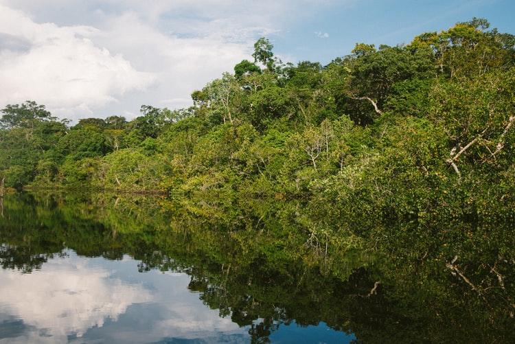 I fili invisibili dell'informazione ambientale